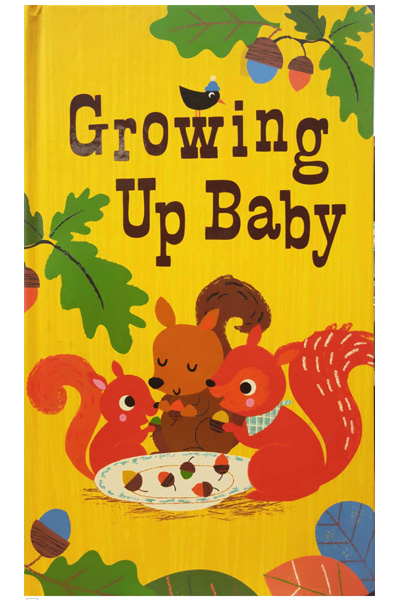 Growing Up Baby (Oversized) Board Book