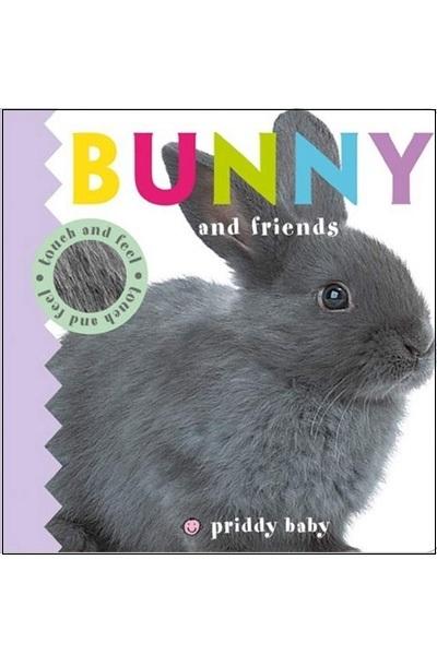 Bunny & Friends :Touch & Feel (Board Book)