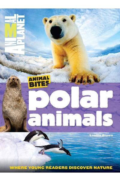 Animal Planet: Animal Bites: Polar Animals