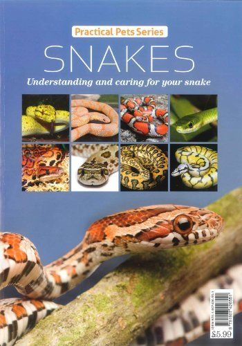Snakes:Practical Pets Series:Understanding and caring for your snake