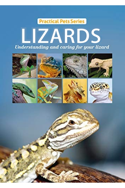 Lizards: Practical Pets Series:Understanding and caring for your lizard