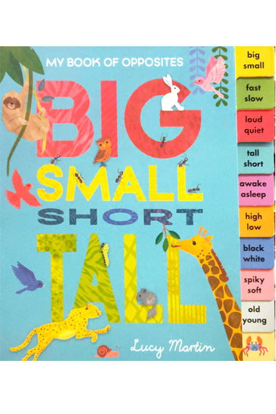 My Book of Opposites: Big Small Short Tall - Board Book