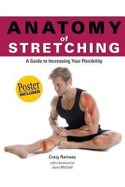 Anatomy of Stretching - A Guide to Increasing Your Flexibility